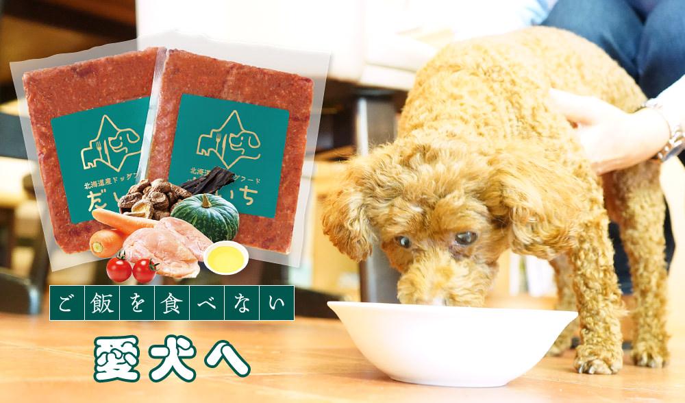 【公式】ドッグフードだいち|ご飯を食べない愛犬へ